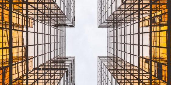 Absorptiecapaciteit in organisaties
